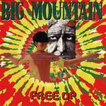 Free Up Big Mountain
