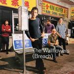 Breach The Wallflowers