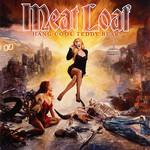 Hang Cool Teddy Bear Meat Loaf