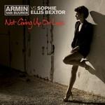 Not Giving Up On Love (Featuring Sophie Ellis-Bextor) (Cd Single) Armin Van Buuren