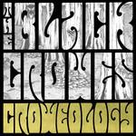 Croweology The Black Crowes
