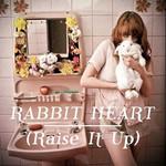 Rabbit Heart (Raise It Up) (Cd Single) Florence + The Machine