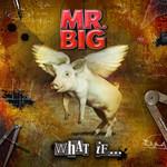 What If... Mr. Big