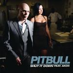 Shut It Down (Featuring Akon) (Cd Single) Pitbull