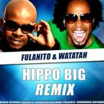 Hippo Big (Featuring Watatah) (Remix) (Cd Single) Fulanito