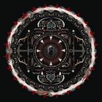 Amaryllis Shinedown