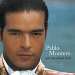 Que Voy A Hacer Sin Ti Pablo Montero