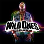 Wild Ones Flo Rida