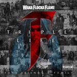 Triple F Life: Friends, Fans & Family Waka Flocka Flame