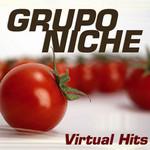 Virtual Hits Grupo Niche