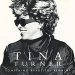 Something Beautiful Remains (Cd Single) Tina Turner