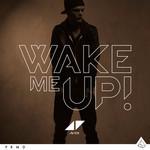 Wake Me Up (Cd Single) Avicii