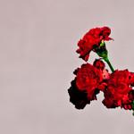 Love In The Future John Legend