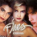 Exitos (2003) Flans