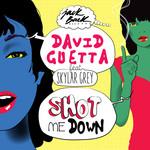 Shot Me Down (Featuring Skylar Grey) (Cd Single) David Guetta