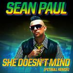 She Doesn't Mind (Pitbull Remix) (Cd Single) Sean Paul