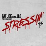 Stressin (Featuring Jennifer Lopez) (Cd Single) Fat Joe