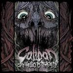 Say Hello To Tragedy Caliban