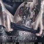 Tremenda Sata (Feat. Daddy Yankee, Nicky Jam, De La Ghetto & Plan B) (Remix) (Cd Single) Arcangel