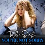You're Not Sorry (Csi Remix) (Cd Single) Taylor Swift