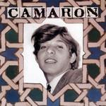 Venta De Vargas Camaron