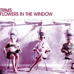 Flowers In The Window (Cd Single) Travis