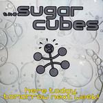 Here Today, Tomorrow Nekt Week! The Sugarcubes