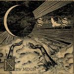 New Moon Swallow The Sun