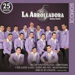 Iconos: 25 Exitos La Arrolladora Banda El Limon De Rene Camacho
