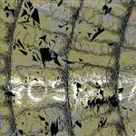 The Galilean Satellites Rosetta