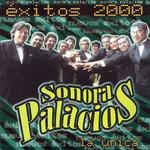 Exitos 2000 Sonora Palacios