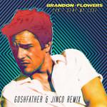 Can't Deny My Love (Goshfather & Jinco Remix) (Cd Single) Brandon Flowers