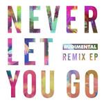 Never Let You Go (Remixes) (Ep) Rudimental