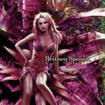 Everytime (Cd Single) Britney Spears
