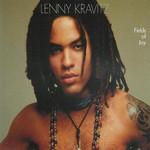 Fields Of Joy (Cd Single) Lenny Kravitz