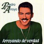 Arroyando De Verdad Pedro Arroyo