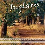 Musica Andina De Colombia Volumen 2 Juglares