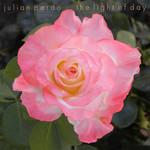 The Light Of Day Julian Pardo