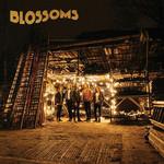 Blossoms Blossoms