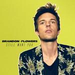 Still Want You (Cd Single) Brandon Flowers