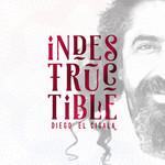 Indestructible Diego El Cigala