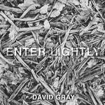 Enter Lightly (Cd Single) David Gray