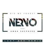 Did We Forget (Featuring Amba Shepherd) (Lady Bee Remix) (Cd Single) Nervo
