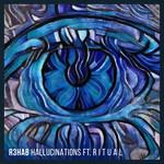 Hallucinations (Featuring Ritual) (Cd Single) R3hab