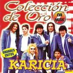 Coleccion De Oro Grupo Karicia