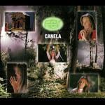 Canela (Cd Single) Fey