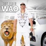Wao (Cd Single) Rey Pirin