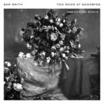 Too Good At Goodbyes (Snakehips Remix) (Cd Single) Sam Smith
