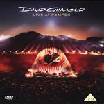 Live At Pompeii (Dvd) David Gilmour