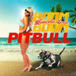 Muevelo Loca Boom Boom (Cd Single) Pitbull